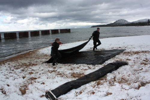Removing barriers from Lakeside Beach, November 2015
